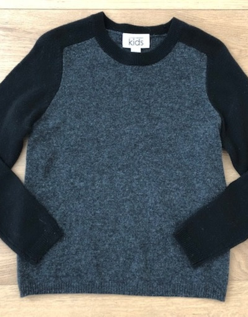 Autumn Cashmere Autumn Cashmere 2 Color Saddle Crew