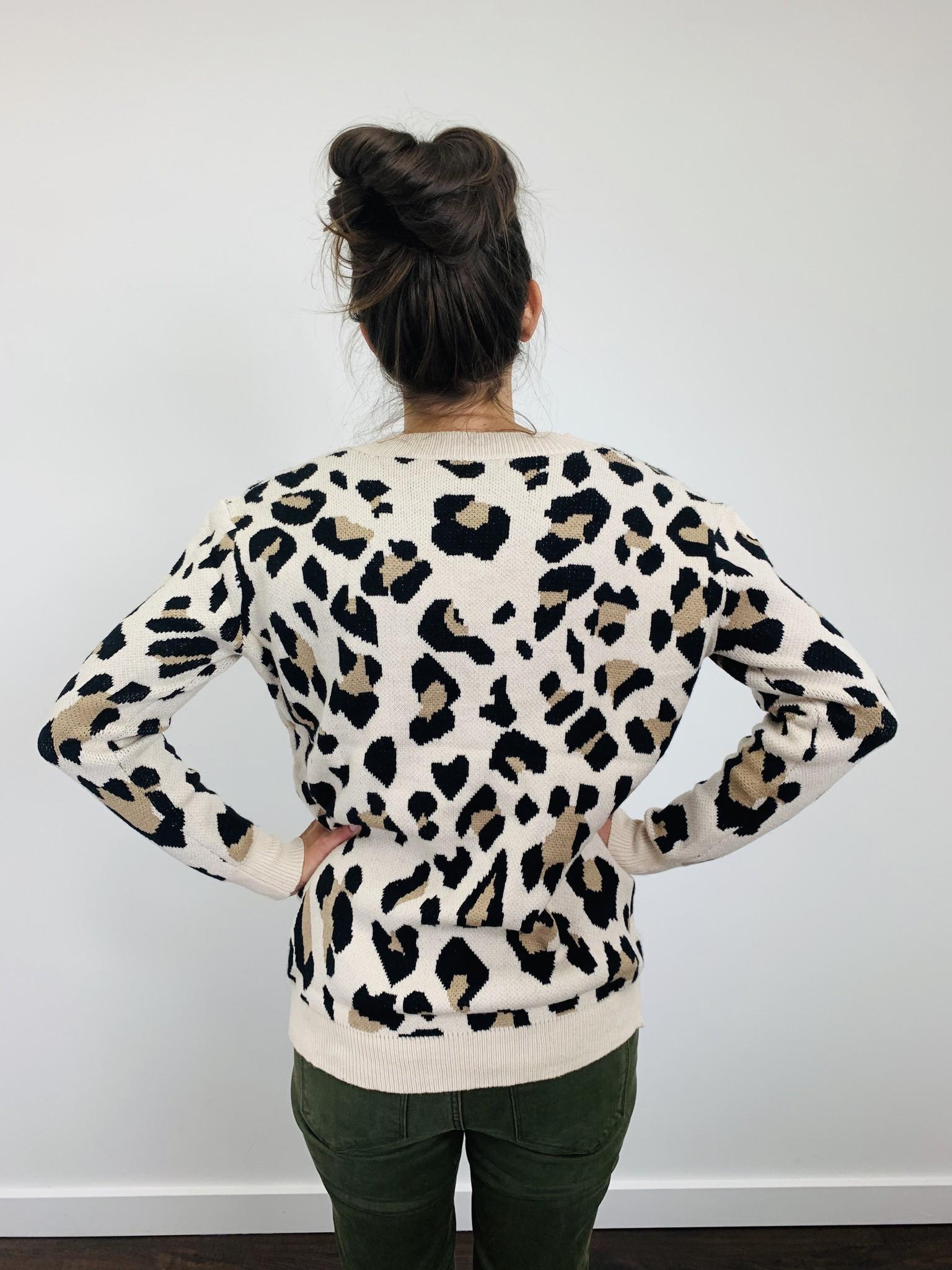 Entro Leopard V Neck Sweater