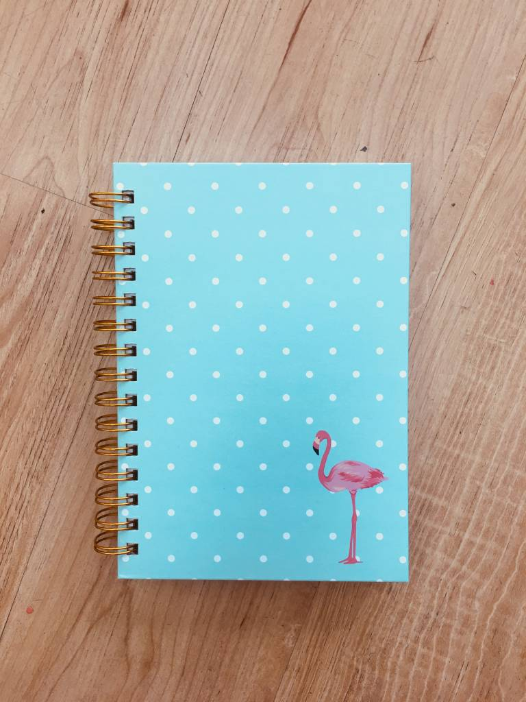 Graphique Flamingo Spiral Journal