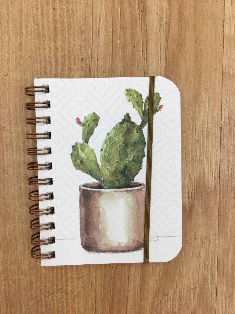 Legacy little spiral cactus notebook