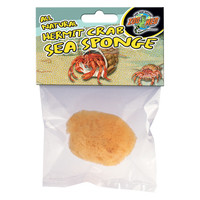 All Natural Hermit Crab Sea Sponge