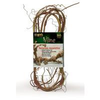 Lee's 6' Terrarium Vine