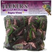 Repta-Vines Purple Coleus