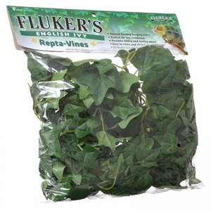 Fluker Repta-Vines English Ivy