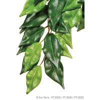 Hanging Silk Ficus