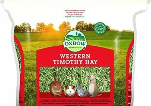 Hay & Grass