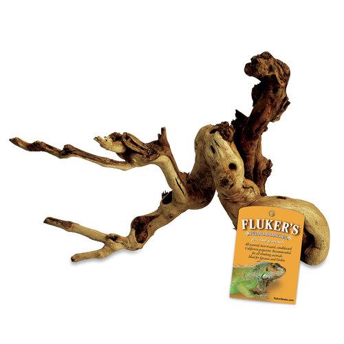 Fluker Iguana Branch