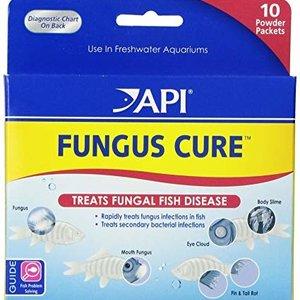 API Fungus Cure