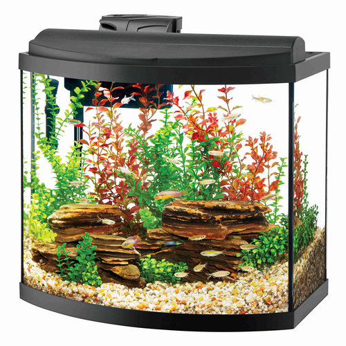 Aqueon Aqueon Bow Front Aquarium Kit