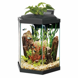 Aqueon Aqueon Premium Hexagon LED Aquarium Kit