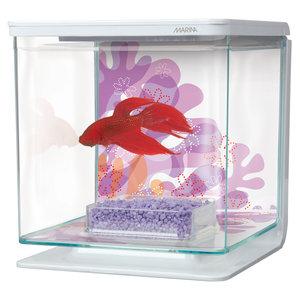 Marina Betta Kit - Flower Theme - 2 Liter (.53 Gallon)