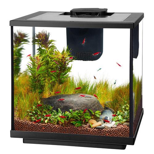 Aqueon LED Shrimp Aquarium Kit - 7.5 Gallon
