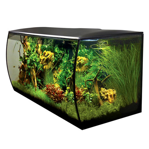 Flex Aquarium Kit - Black - 32.5 Gallon