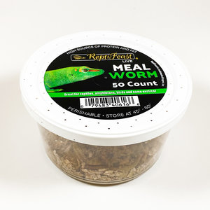 Reptifeast Mealworms 50ct