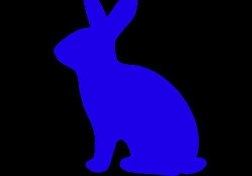 Rabbits & Misc