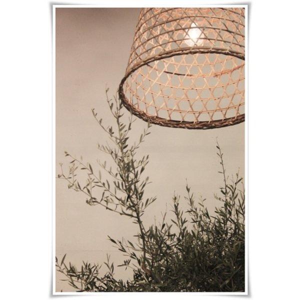 BASOPEN-LAMP Bulb