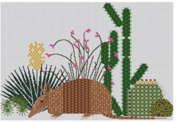 Armadillo and Cactus