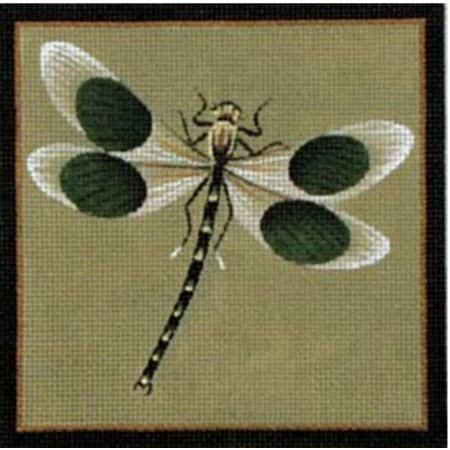 Black Dot Dragonfly