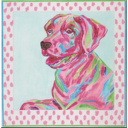 Labrador with pink spotted border