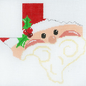 Texas Shaped Santa