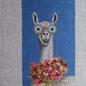 Llama single eyeglass case