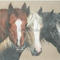 3 Blaze Horses