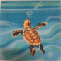 Baby Sea Turtle Swimming