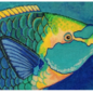 Green Throated Parrotfish