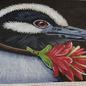 Maximillian Heron