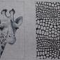 Black/White Giraffe