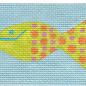 Fish CC Case