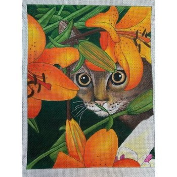 Tiger Lily Cat
