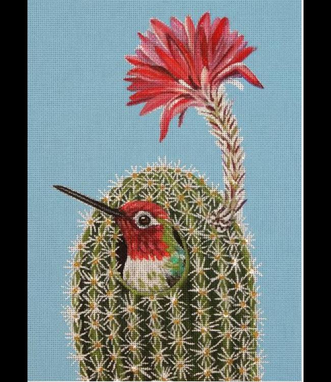 No Solicitation/Hummingbird