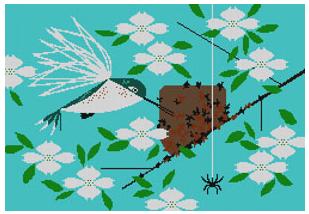 Hummingbird Homemaker