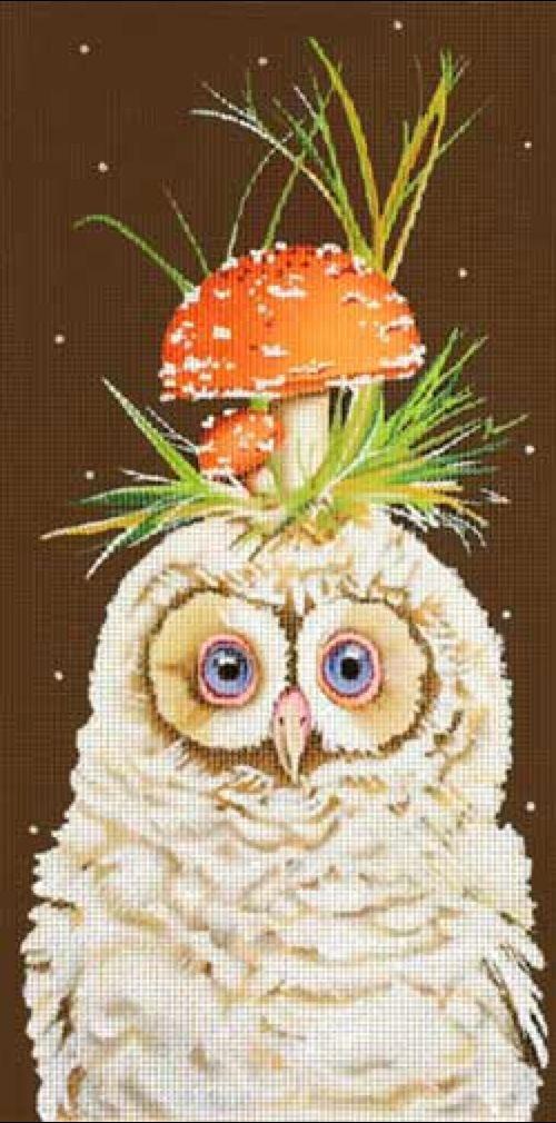 Owl w/ Mushroom on Head