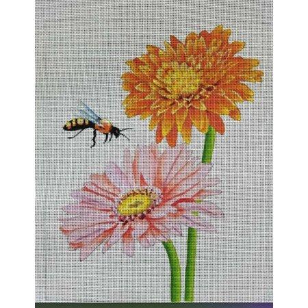 Bee on Gerber Daisy