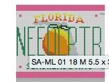 Florida Mini-License Plate