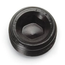 "Tanks Inc. 1/4"" NPT Allen Head Pipe Plug - 662043"