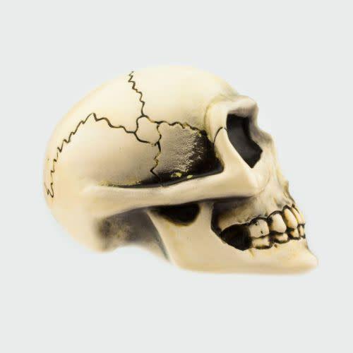 Van Chase - Small Skull Shift Knob