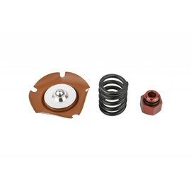 FiTech EFI 650HP Regulator Service Kit - 44029