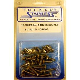 "Totally Stainless 12-24 x 1/2, 3/4, & 1"" Stainless Truss Head Allen Machine Screws"