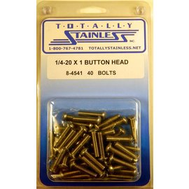 Totally Stainless 1/4-20 x 1 Button Head Bolts- Panel 7 - #8-4541