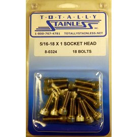 Totally Stainless 5/16-18 x 1 Socket Head Bolts - Panel 8 (D5) - #8-0324