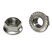 Stainless Serrated Flange Nuts
