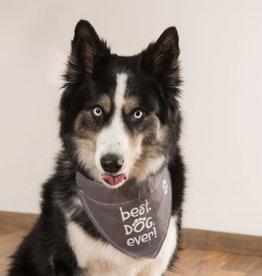 Best Dog Ever Canvas Slip on Pet Bandanna