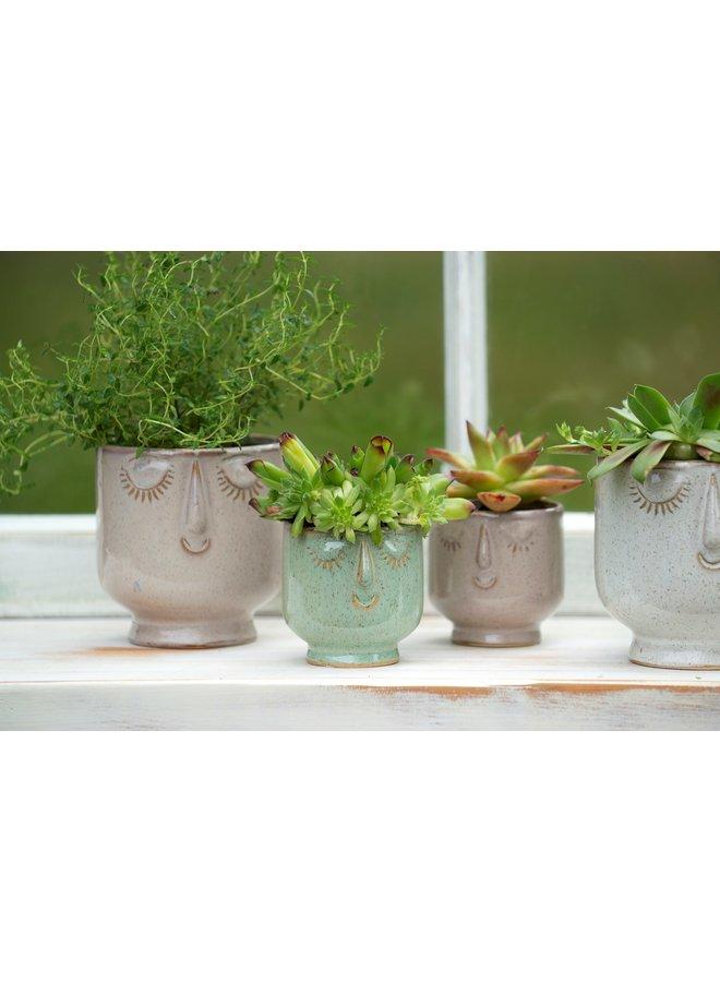 Small Moss Friendly Face Pot