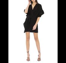IRO / Cedar Dress