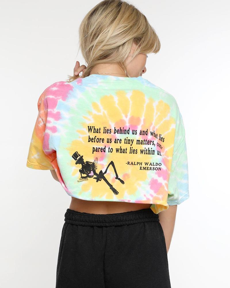BOYS LIE BOYS LIE / Within Us Crop Tshirt (Tie Dye, o/s)