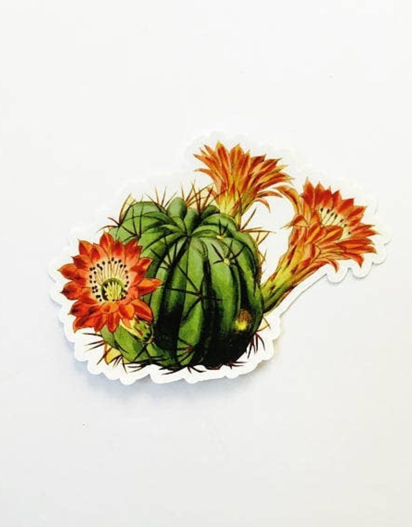 Red Flowering Cactus Sticker