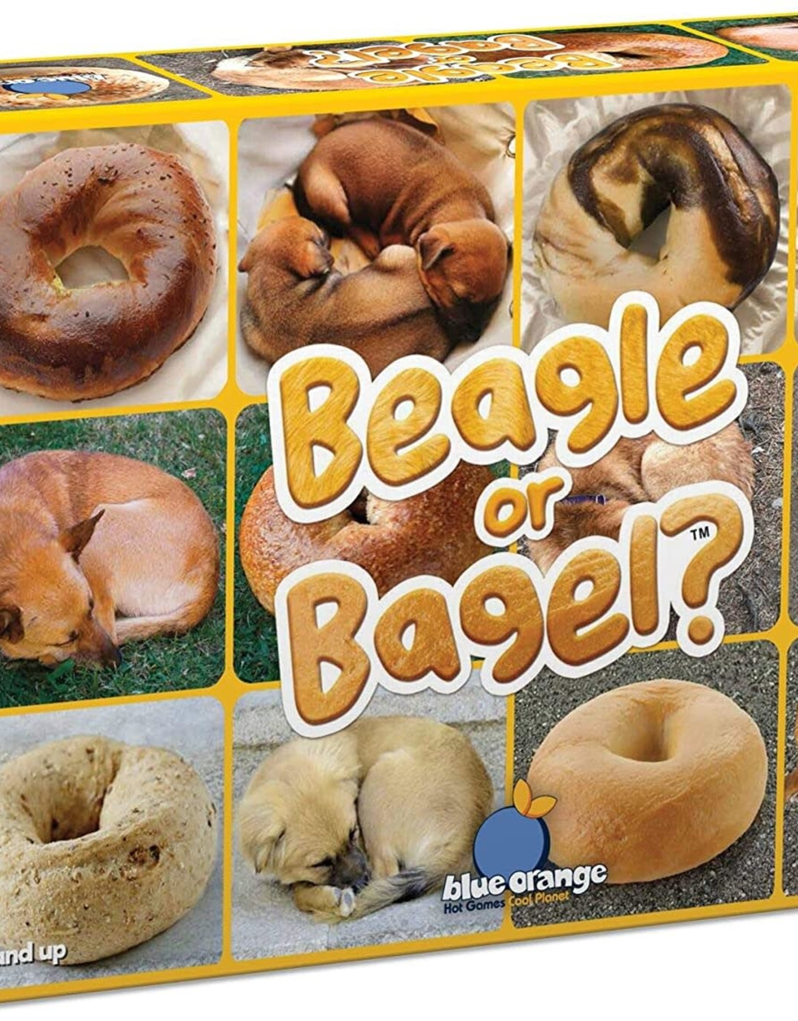 Beagle or Bagel